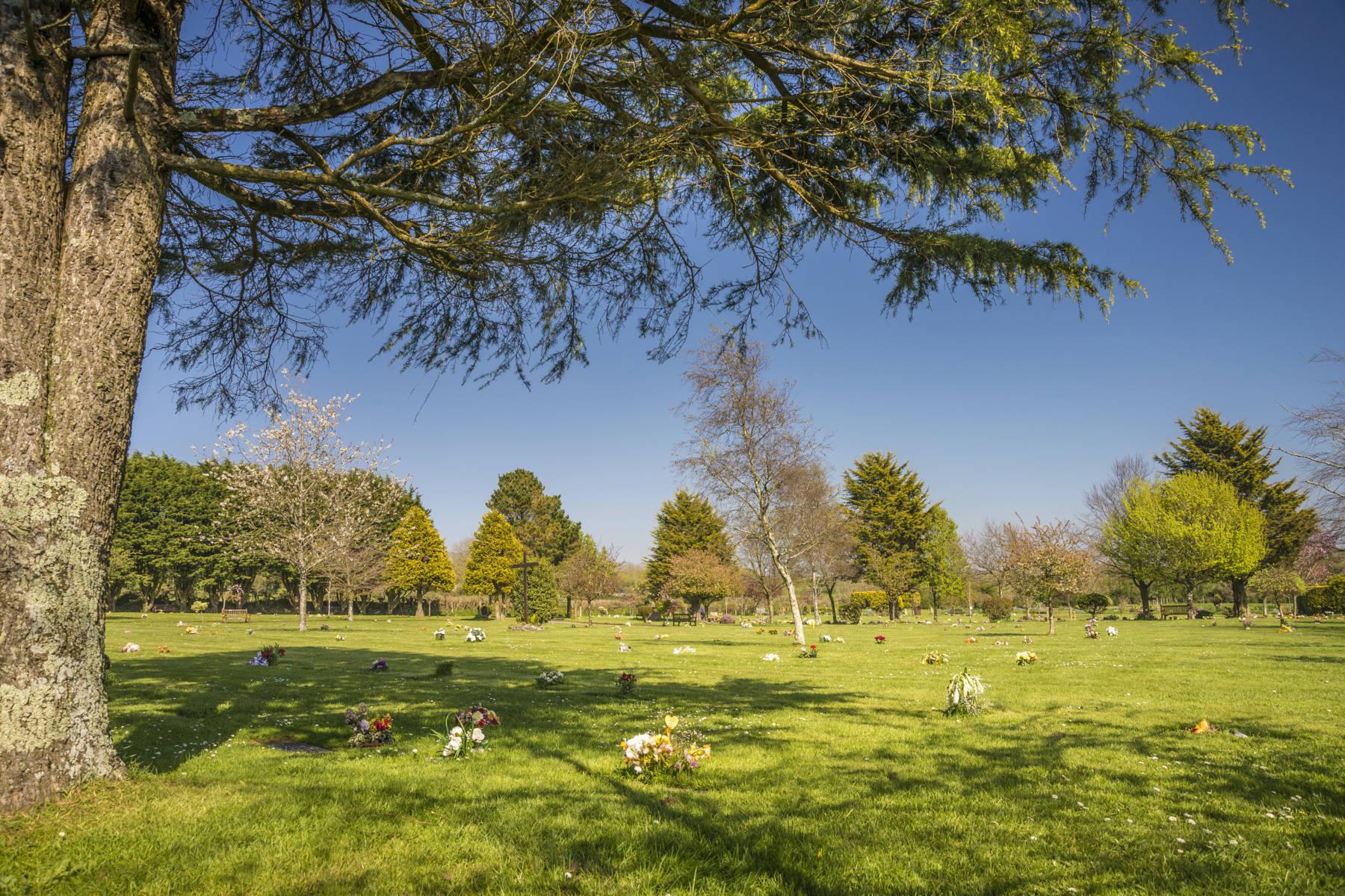 http://drakememorialpark.co.uk/upload/gallery_image/401acf270319114700.JPG