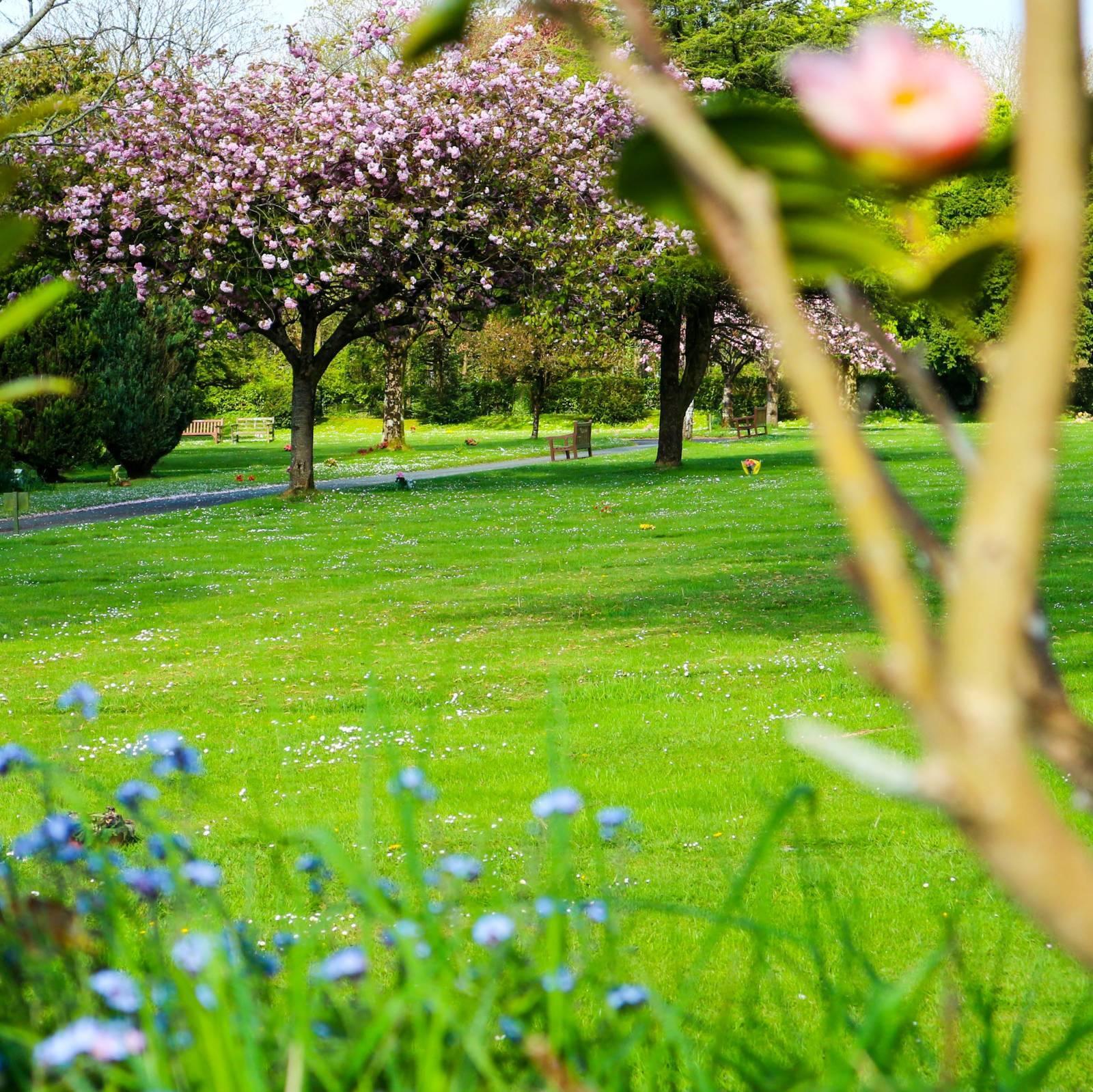 http://drakememorialpark.co.uk/upload/gallery_image/67162a270319114730.jpg