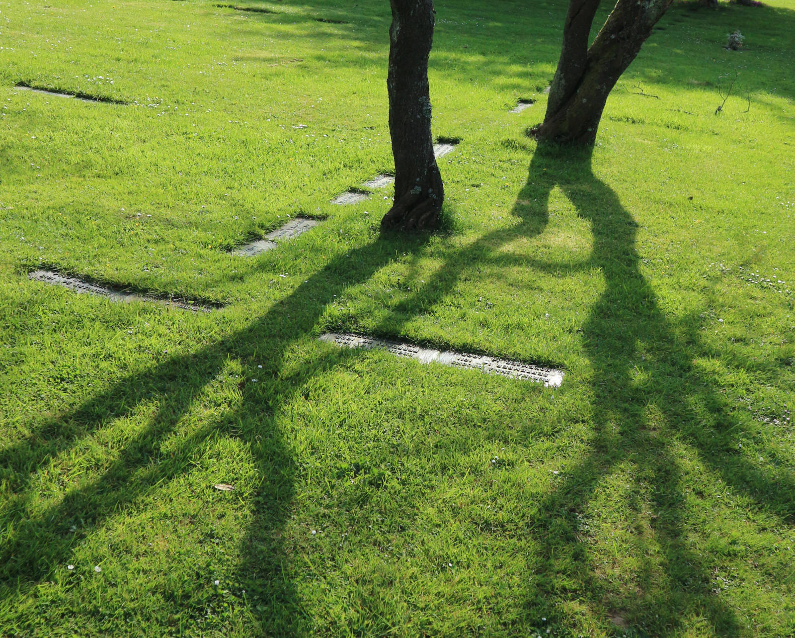 http://drakememorialpark.co.uk/upload/gallery_image/7208e4270319114701.JPG