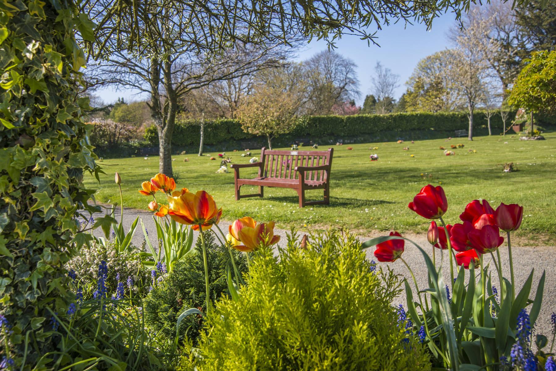 http://drakememorialpark.co.uk/upload/gallery_image/bd2e33270319114700.JPG